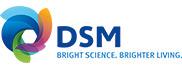 (Español) DSM