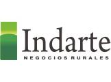 Indarte