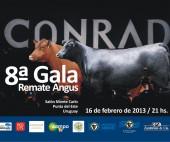 gala-angus-2013