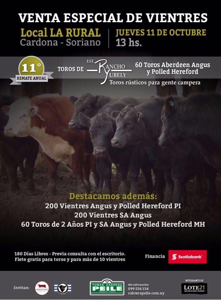 Venta Anual de Rancho Yubely de Sr. Cesar Musselli
