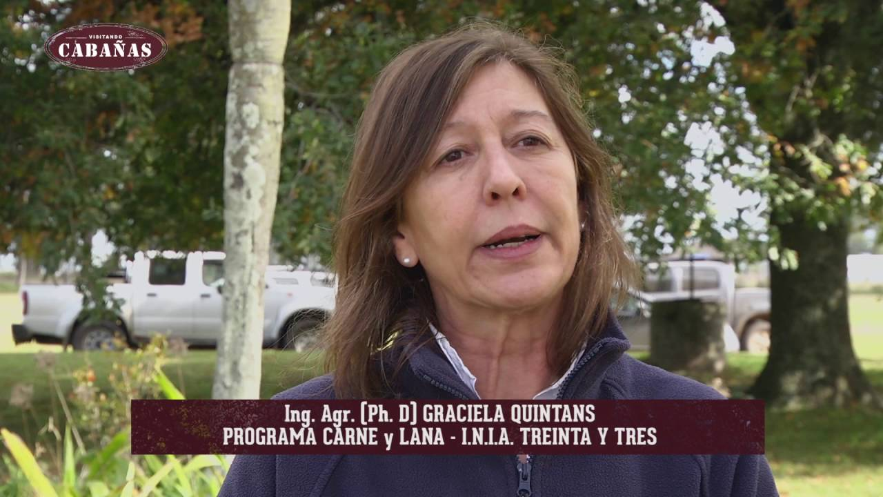GIRA ANGUS 2016 – 001