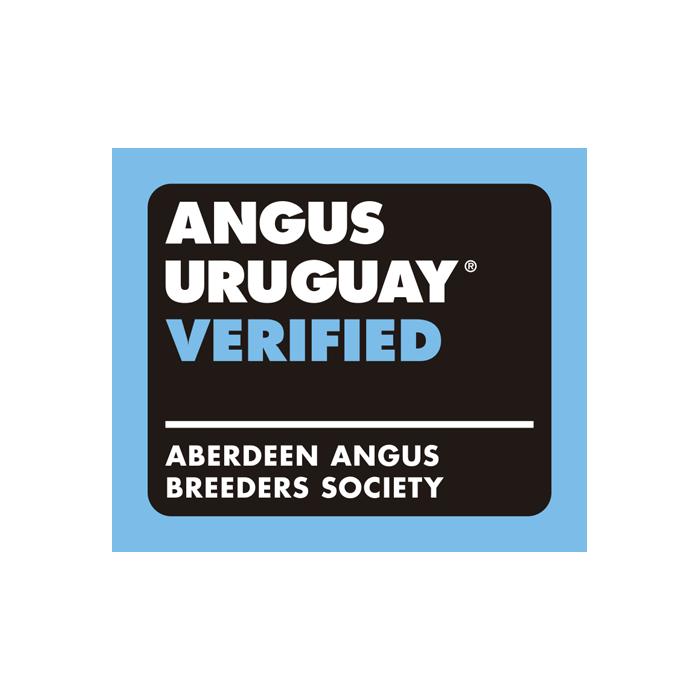Certificacion Carne Angus